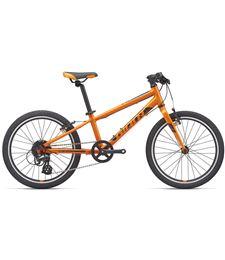 arx20_orange